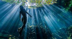 Christian Vizlさんの水中写真をご紹介します。 メキシコにある「セノーテ」をご存知でしょうか?「セノーテ」とは何百万年もの間、降り続いた雨が石灰岩の大地を溶かし洞窟になったもの。メキシコのユカタン半島の世界遺産シアンカアン保護区には推定7,000個近い「セノーテ」があるようです。 その「セノーテ」でこれらの写真は撮影されました。もはや水中とは思えないほどの透明感です。死ぬまでに行ってみたい場所の候補に入れてみてはいかがですか?ではご覧下さい! もちろん水中も素晴らしいのですが「セノーテ」の自然環境も美しいので合わせてご紹介しますね。飛び込み台や梯子などが用意されており、遊ぶのに最適。ダイビングを実施している所もあります。 ※以下からはChristian Vizlの写真作品ではありません。 by John Stanmeyer