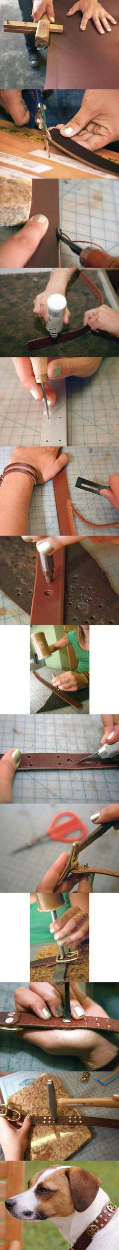 DIY Stylish Leather Dog Collar  step by step