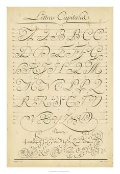 Vintage Looking Calligraphy Chart Tattoo Lettering Styles, Graffiti Lettering Fonts, Lettering Design, Chicano Lettering, Lettering Ideas, Cursive Fonts Alphabet, Tattoo Fonts Cursive, Penmanship, Calligraphy Alphabet
