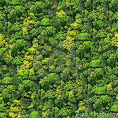 forest-seamless-pattern-view-above-13830390.jpg (400×400)