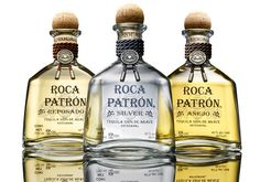 Image result for roca patron