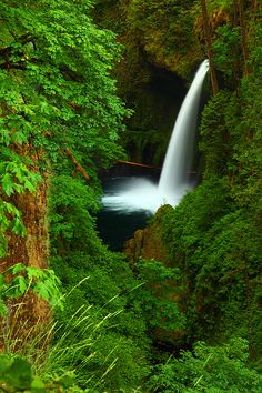 ✯ Waterfall - Eagle Creek Gorge, Oregon