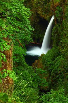 ✯ Waterfall - Eagle Creek Gorge, Oregon
