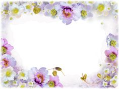 View album on Yandex. Flower Frame, Views Album, Pink Roses, Flowers, Yandex Disk, Beautiful, Pride, Frames, Photography