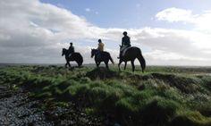 Small Island, Trekking, Horses, Mountains, Website, Beach, Travel, Animals, Viajes