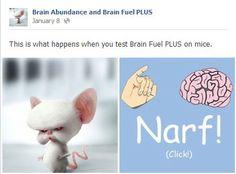Brain Fuel Plus by Brain Abundance. This is what happens when you test Brain Fuel Plus on mice. They turn in smart mice bent on world domination! narf!  #brainabundance #brainfuelplus #humor  http://www.facebook.com/BrainFuelHealth