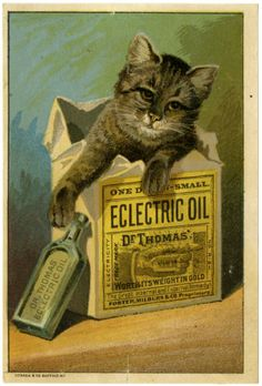 Patent Medicine Trade Cards, c.1900 - Retronaut