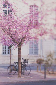 Spring in Paris. @LaVieAnnRose