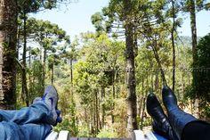 Monte Verde é um distrito do município de Camanducaia, localizado em Minas Gerais na Serra da Mantiqueira.  Leia mais...