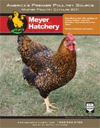 Meyer Hatchery for poultry