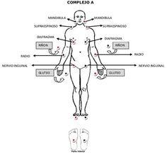 Libros par bio para Descargar - Página Jimdo de parbiomagneticoarcano