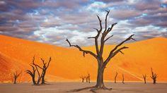 Un lugar sacado de una pintura: El Dead Vlei, ubicado en África, está rodeado por las dunas más altas del mundo y cuenta con árboles secos de 900 años