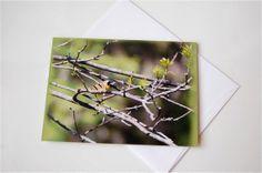 Nature Blank Greeting Card w/envelope Bird Greeting by KralsClicks, $3.50