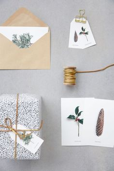 Gold leather string and nature postcards.