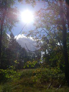 Sunshine. photo: Johanna Rehn
