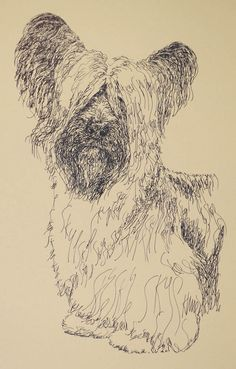 Skye Terrier: Dog Art Portrait by Stephen Kline, art drawn entirely from the words Skye Terrier. He also can add your dog's name into the lithograph. - drawDOGS.com : drawdogs.com His collectors number in the thousands from over 20 countries and every state in the US. Kline's dog art has generated tens of thousands of dollars for dog rescues worldwide. http://drawdogs.com/product/dog-art/skye-terrier-dog-portrait-by-stephen-kline/