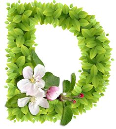 Abecedario con Hojas Verdes y Flores Blancas. Alphabet with Green Leaves and White Flowers. Flower Background Wallpaper, Cute Wallpaper Backgrounds, Flower Backgrounds, Flower Letters, Flower Names, D Letter Design, Lettering Design, Hand Lettering, Stylish Letters
