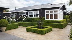A water feature has been replaced with another square of buxus, planted with Fagus sylvatica 'Purple Fountain'; paving ...