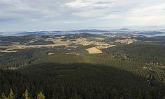 Boubín forest The Czech Rep.