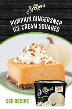 Ice Cream Treats, Ice Cream Desserts, Frozen Desserts, Frozen Treats, Easy Desserts, Delicious Desserts, Dessert Recipes, Pumpkin Dessert, Pumpkin Cheesecake