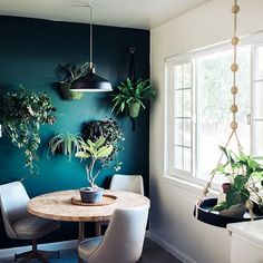 """32 Outstanding Wall Color Bedroom Design And Decoration Ideas - Are you thinking of renovating your old bedroom to give it the """"modern, trendy"""" look? To help you in bringing modernity, trendy and fashionable look t. Bedroom Green, Bedroom Wall, Bedroom Decor, Dark Teal Bedroom, Dark Teal Living Room, Bedroom Fun, Bedroom Plants, White Bedroom, Master Bedrooms"""