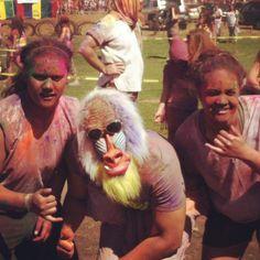 COLOR FEST Color, Colour, Colors