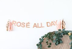 ROSÉ ALL DAY CELEBRATION BANNER by POSHAHOOLIE for bridal... https://smile.amazon.com/dp/B01N2ADF2S/ref=cm_sw_r_pi_dp_x_WtKwzbQ6X50CQ