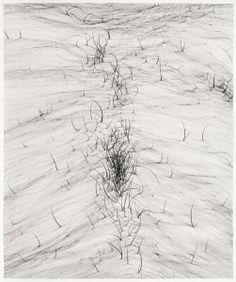 Tinta china y grafito sobre papel. 55x46 cm. 2014