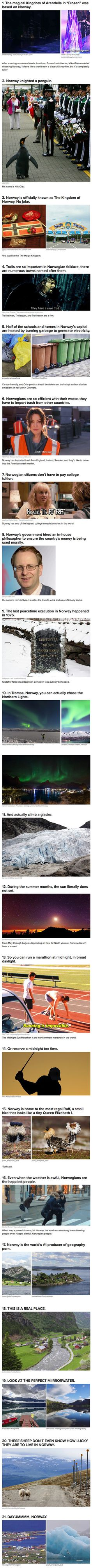 We have rounded up some interesting reasons why geeks should consider moving to Norway.