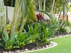 tropical garden design Harmonious mix of ferns and palms creates a tropical garden oasis. Tropical Garden Design, Tropical Backyard, Backyard Garden Design, Garden Landscape Design, Tropical Plants, Tropical Leaves, Small Tropical Gardens, Rustic Backyard, Landscape Designs