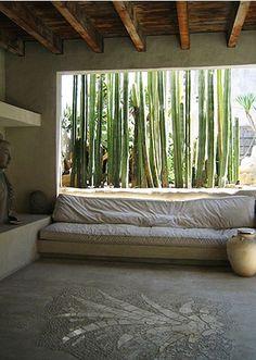 Studio inspiration: Phillip Dixon house, cactus patio with deep outdoor sofa