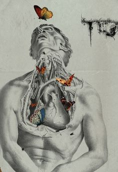 Digital collage by Michele Parliament examines the symbolic connection of butterflies with death and new life. Anatomical <3