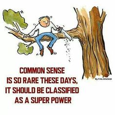 Common sense is so rare these days, it should be classified as a super power. Classroom Motivational Posters, Classroom Posters, Funny Picture Quotes, Funny Quotes, Bad Puns, New Classroom, What Next, Making Mistakes, Common Sense