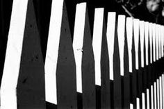 LINE and CONTRAST The difference between the lights and darks of the lines on the fence in the photo create CONTRAST.
