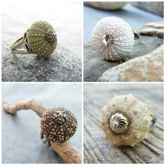 These are beautiful. sea urchin rings They say they strengthen them, but could I still crush it? They are so delicate!