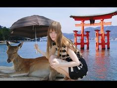 MIYAJIMA - Most beautiful island in Japan 宮島★ 厳島神社 日本一美しいところ - YouTube