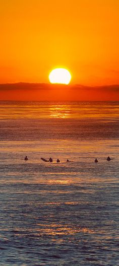 Surfers in La Jolla // San Diego