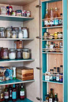teal and plywood pantry cupboard Pantry Cupboard, Pantry Design, Butler Pantry, Layout, Pantry Ideas, Small Kitchens, Plywood, Projects, Teal