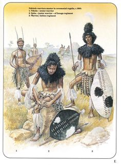 Ndbele warriors muster in ceremonial warrior-of Insuga regiment. African Warrior Tattoos, African Tattoo, African Culture, African History, African Art, Military Art, Military History, Black History, Art History