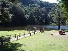 SÃO PAULO - Parque Estadual da Cantareira - Pesquisa Google