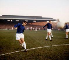 George Best, 1964