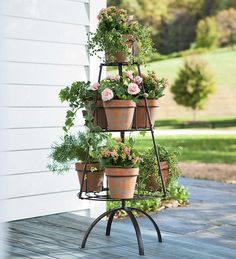 Metal Tree Shaped Plant Stand With Terra Cotta Pots...I want to put culinary herbs in it and put near my outdoor grill, so they're right there when I want them