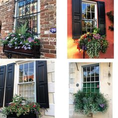 Windows of Charleston SC I love window/flower boxes & Charleston has some of the most beautiful windows & gardens I have ever seen. These folks really take great pride in their neighborhoods & homes. #flowers #windows #windowbox #flowerbox #charleston #southcarolina #sfusa2016 #zenyogaroom by zenyogaroom