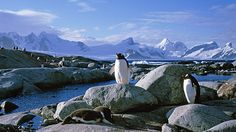 Antartica... Don't know how enjoyable it would be to stay there, but it's gorgeous nonetheless.