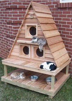 Pallet Outdoor Furniture 29 Awesome Pallet Furniture repurposed designs you can create for your home Outdoor Cat House Pallet Furniture Designs, Pallet Patio Furniture, Pet Furniture, Furniture Projects, Simple Furniture, Pallet Projects, Pallet Ideas, Art Projects, Furniture Plans