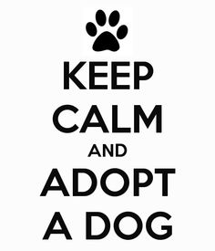 KEEP CALM AND ADOPT A DOG - by dani