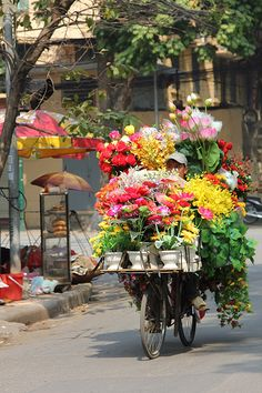 Flower vendor in Hanoi, barely able to see for all the flowers.
