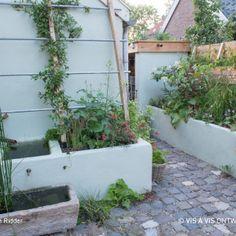 kleine tuin met verhoogde bakken