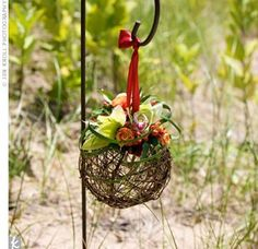 Inspirational Real Wedding Photos Grapevine pomander balls topped with orchids and berries hung from shepherd's hooks on the walkway leading down the beach. Pew Decorations, Wedding Ceremony Decorations, Flowers For You, Diy Flowers, Diy Wedding, Fall Wedding, Trendy Wedding, Wedding Church, Wedding Stuff