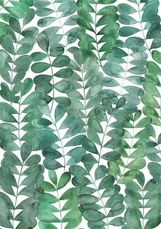 A watercolour design featuring Robinia leaves from my garden